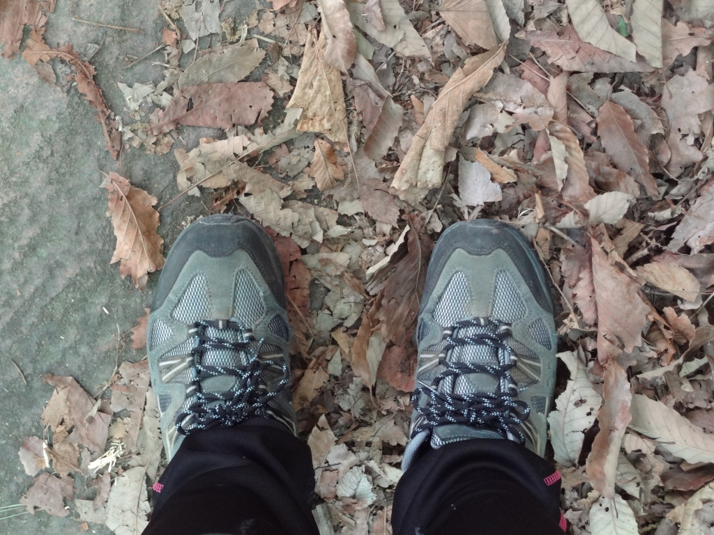 My well-worn hiking shoes. Oh the stories you can tell.