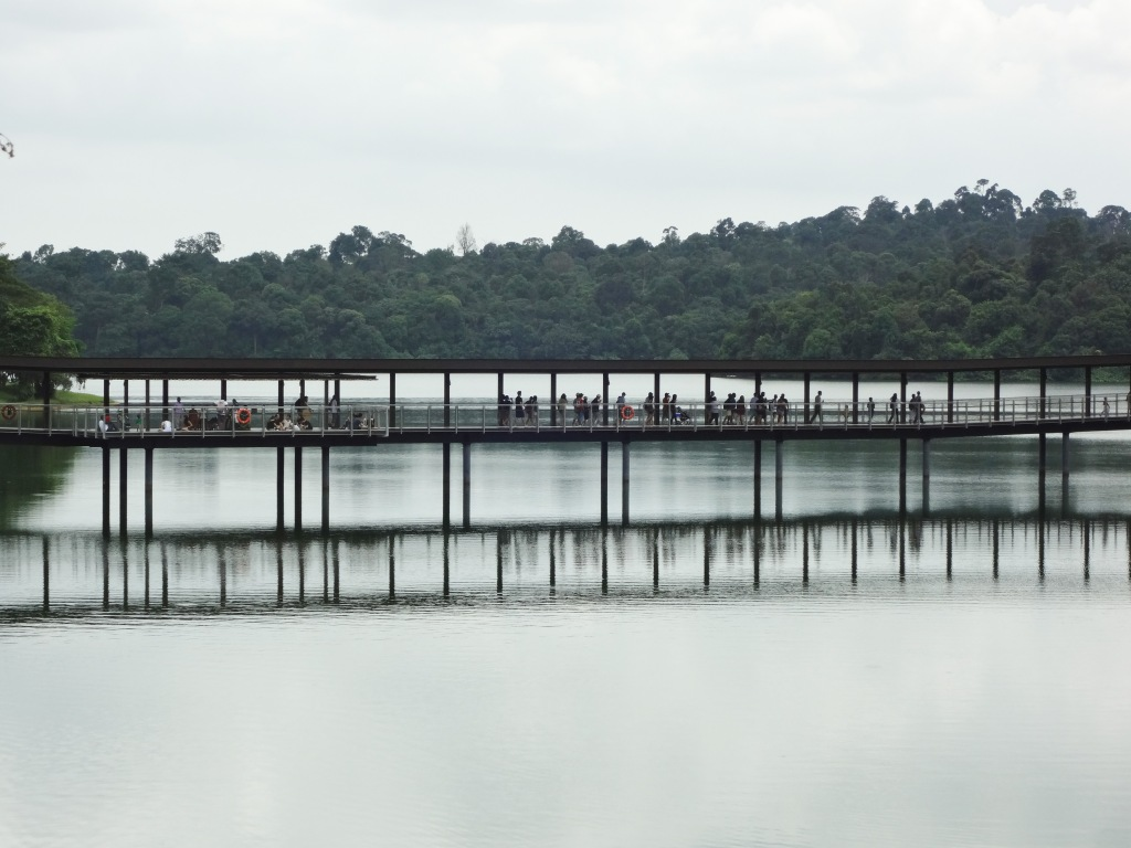 The Upper Seletar Reservoir