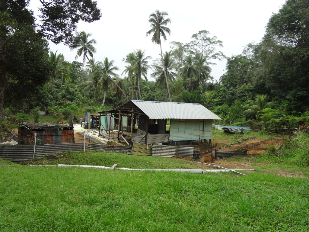 An abandoned kampong house