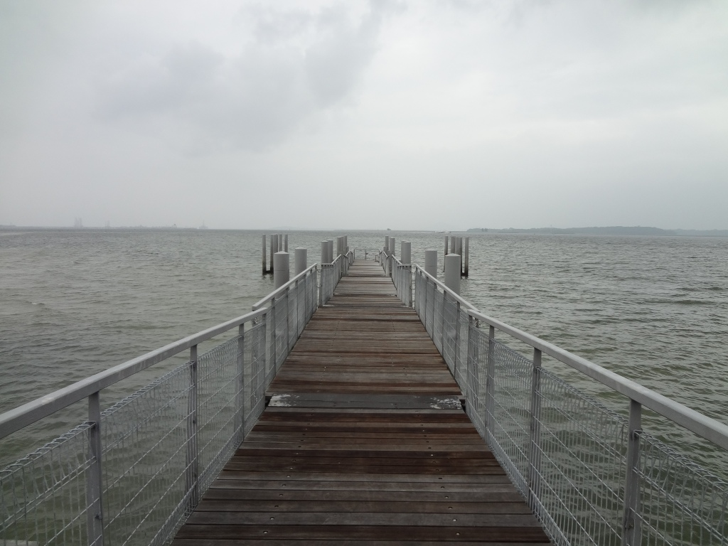 The coastal boardwalk