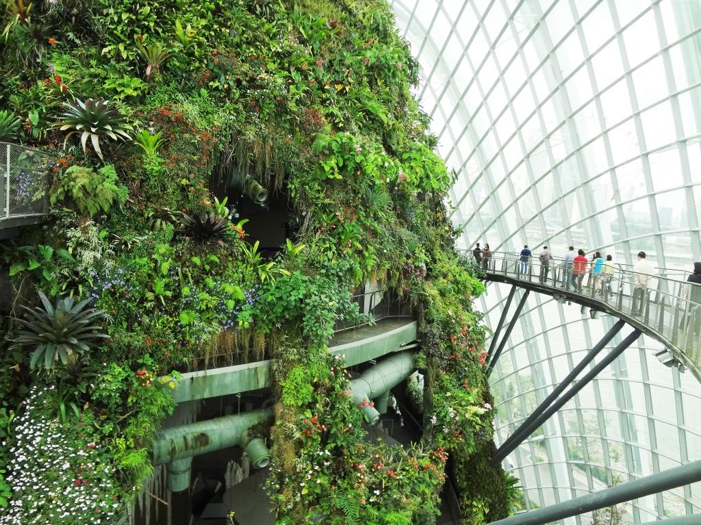 The futuristic walk on the sky bridge