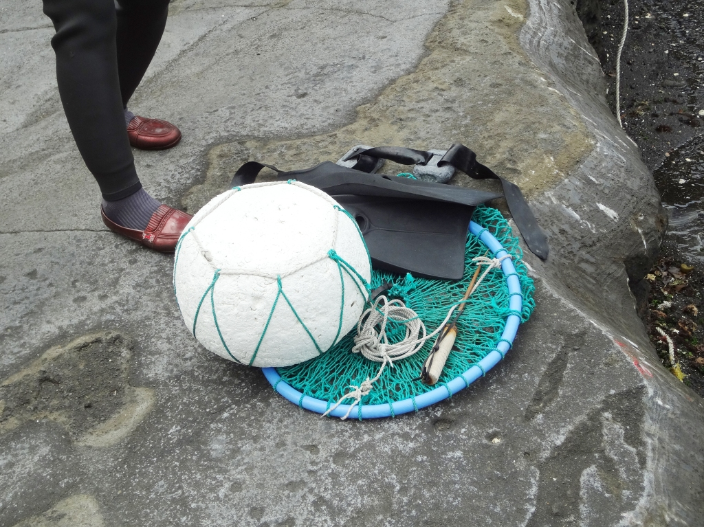 A  floatation device and a net