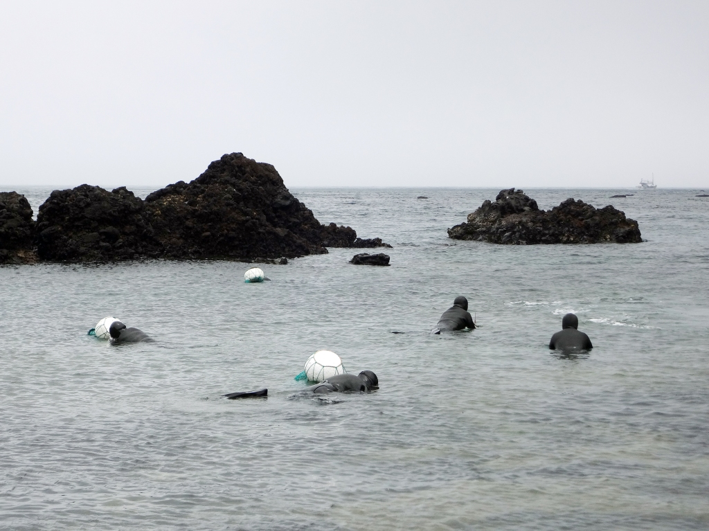 A group of haenyeo begin their dives.